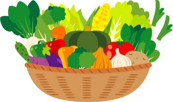 植物の栄養素の種類は・・・?
